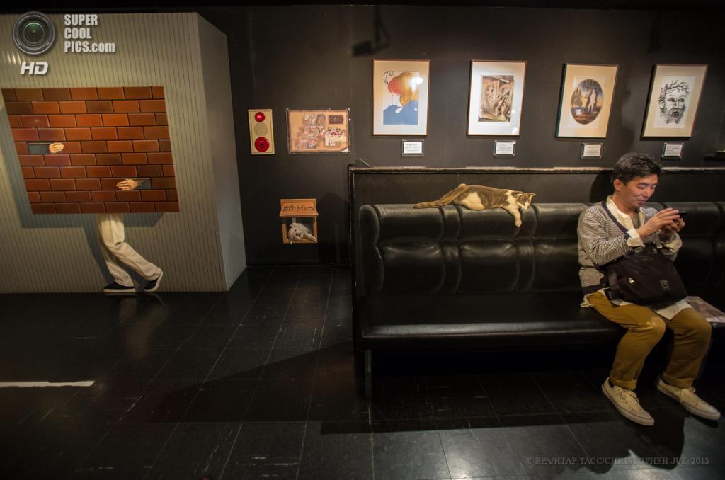 Япония. Хатиодзи, Токио. 17 мая. «Лавка с котом» в музее оптических иллюзий Takao Trick Art Museum. (EPA/ИТАР-ТАСС/CHRISTOPHER JUE)