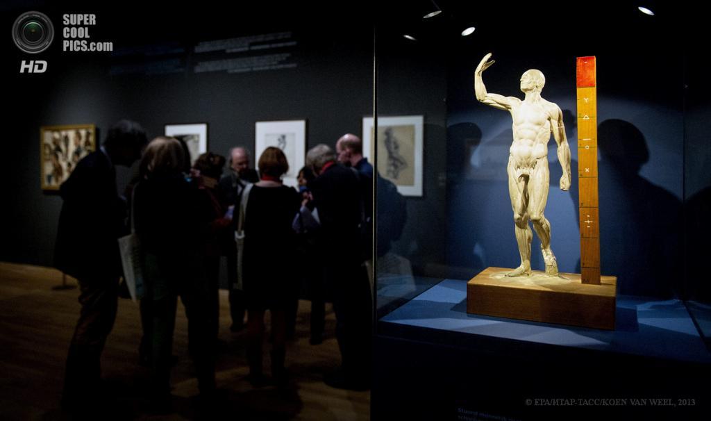 Нидерланды. Амстердам. 1 мая. В Музее Винсента ван Гога, открывшемся после реконструкции. (EPA/ИТАР-ТАСС/KOEN VAN WEEL)