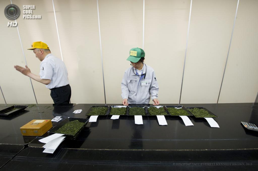 Япония. Сидзуока. 2 мая. Чайный аукцион. (EPA/ИТАР-ТАСС/EVERETT KENNEDY BROWN)