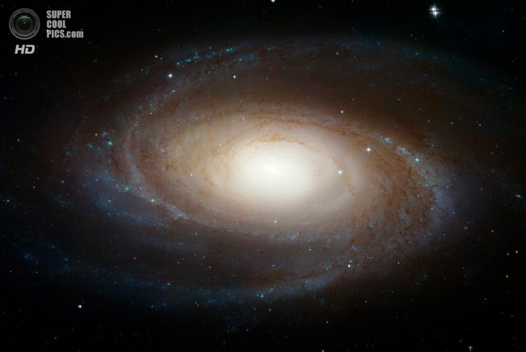 Галактика Боде. (NASA/ESA/STScI/AURA)