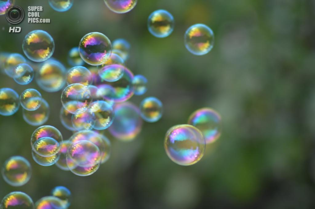Мыльные пузыри. (lorenross)