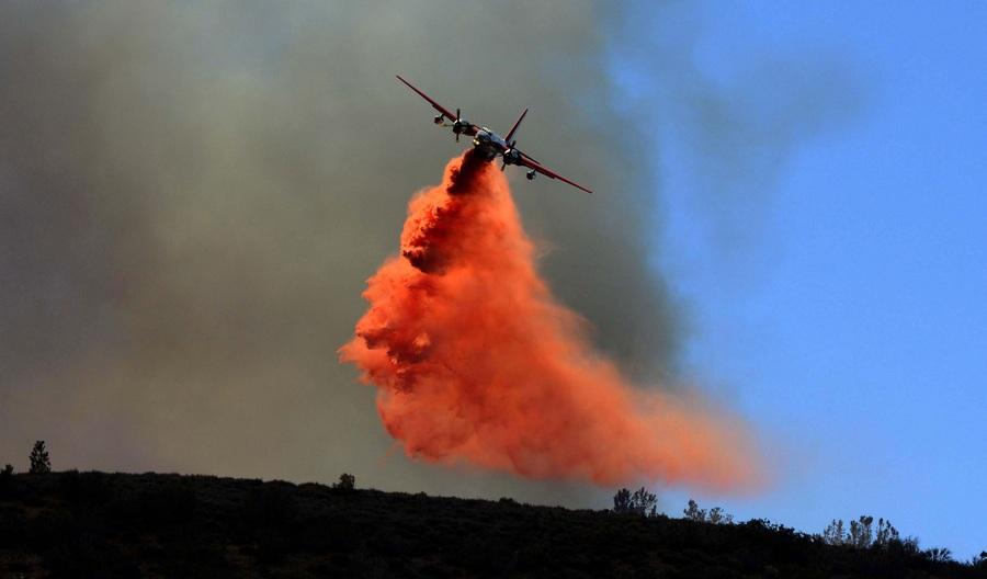 Калифорния в огне (13 фото)