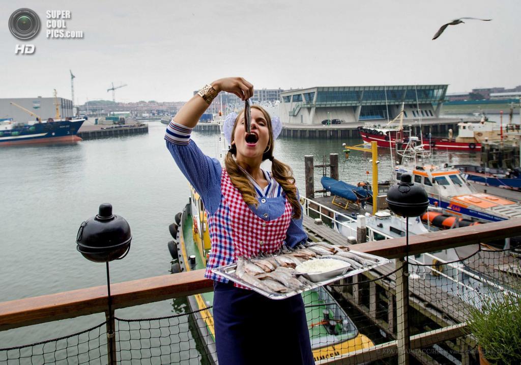 Нидерланды. Схевенинген. 19 июня. Женщина поедает «Hollandse Nieuwe». (EPA/ИТАР-ТАСС/Robin van Lonkhuijsen)