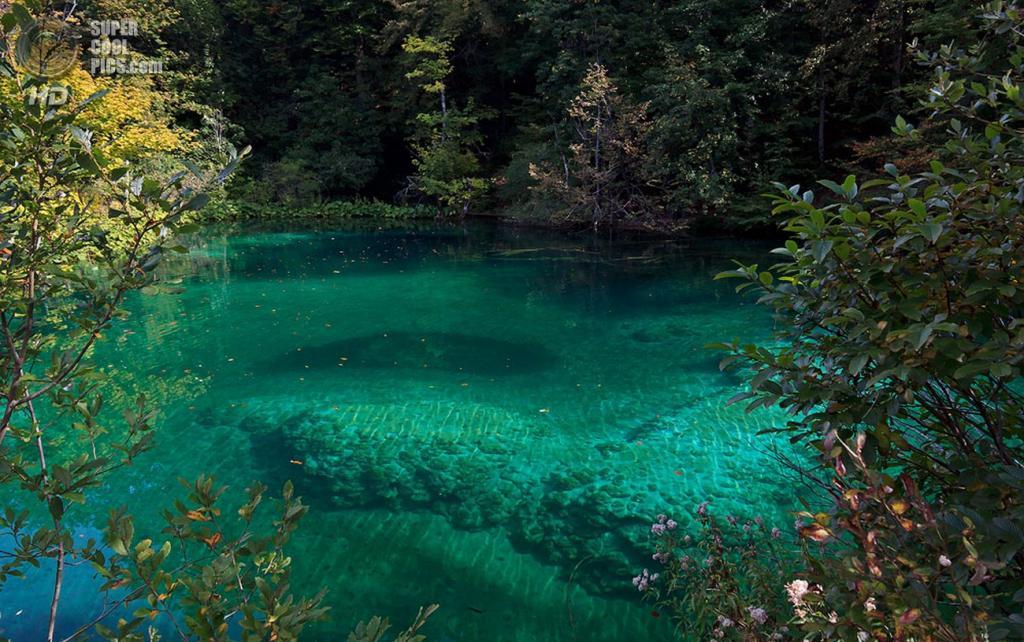 Хорватия. Плитвицкие озёра. (kolyaf117)