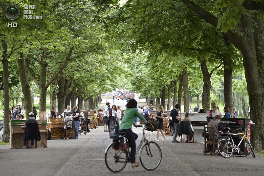Швейцария. Женева. В парке Бастионов. (EPA/ИТАР-ТАСС/MARTIAL TREZZINI)