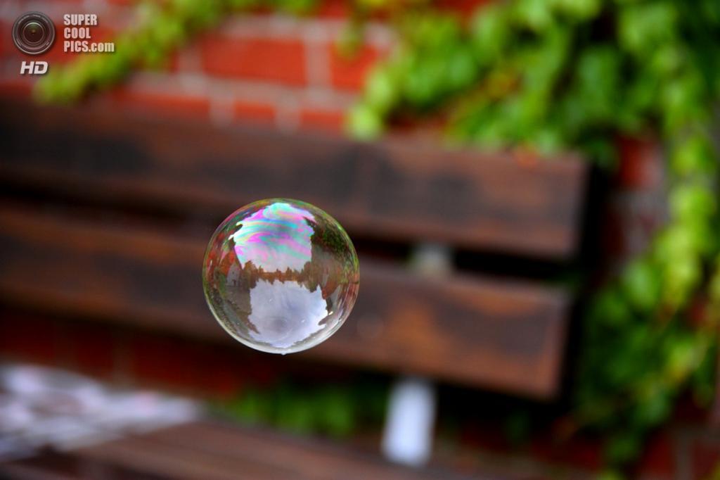 Мыльные пузыри. (dnepr-o)
