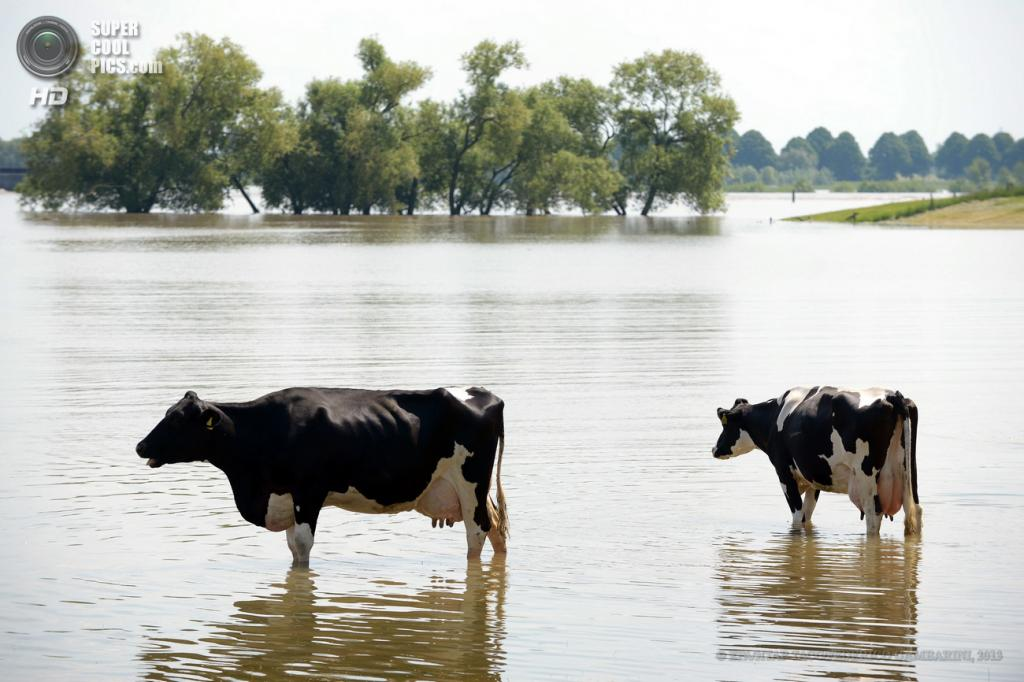 Германия. Ксантен, Северный Рейн — Вестфалия. 5 июня. Последствия наводнения. (EPA/ИТАР-ТАСС/FEDERICO GAMBARINI)
