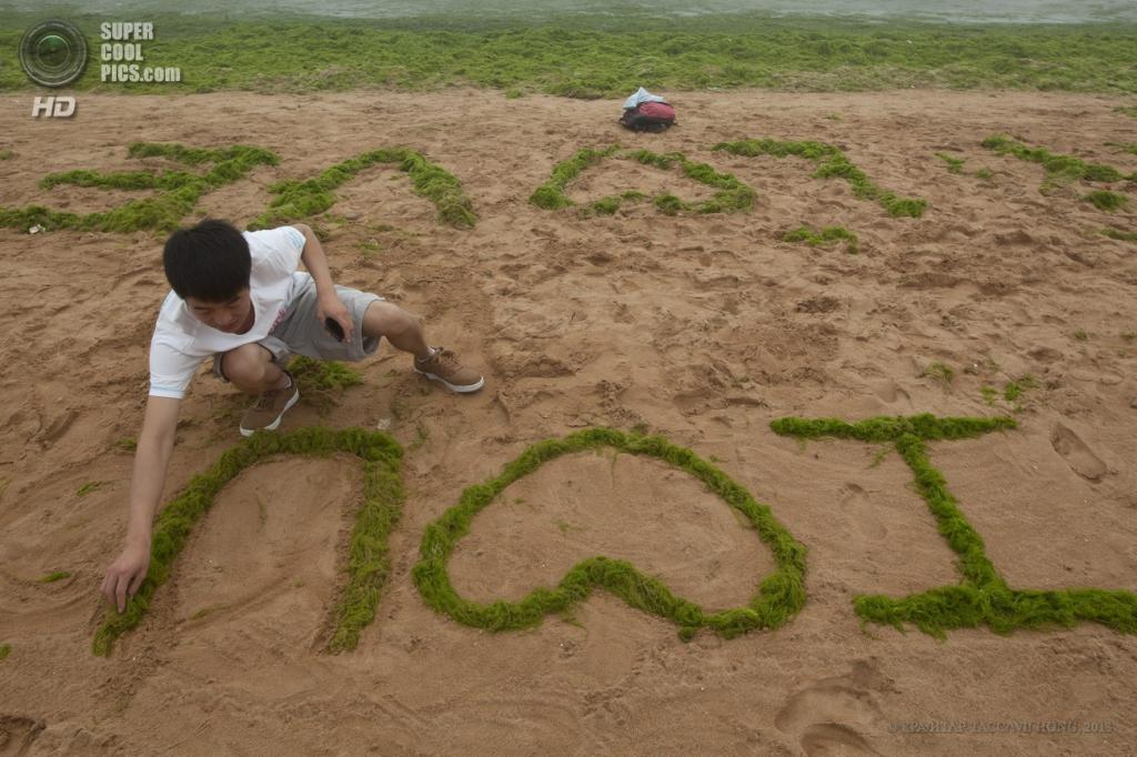 Китай. Циндао, Шаньдун. 17 июня. Водоросли на пляже. (EPA/ИТАР-ТАСС/WU HONG)