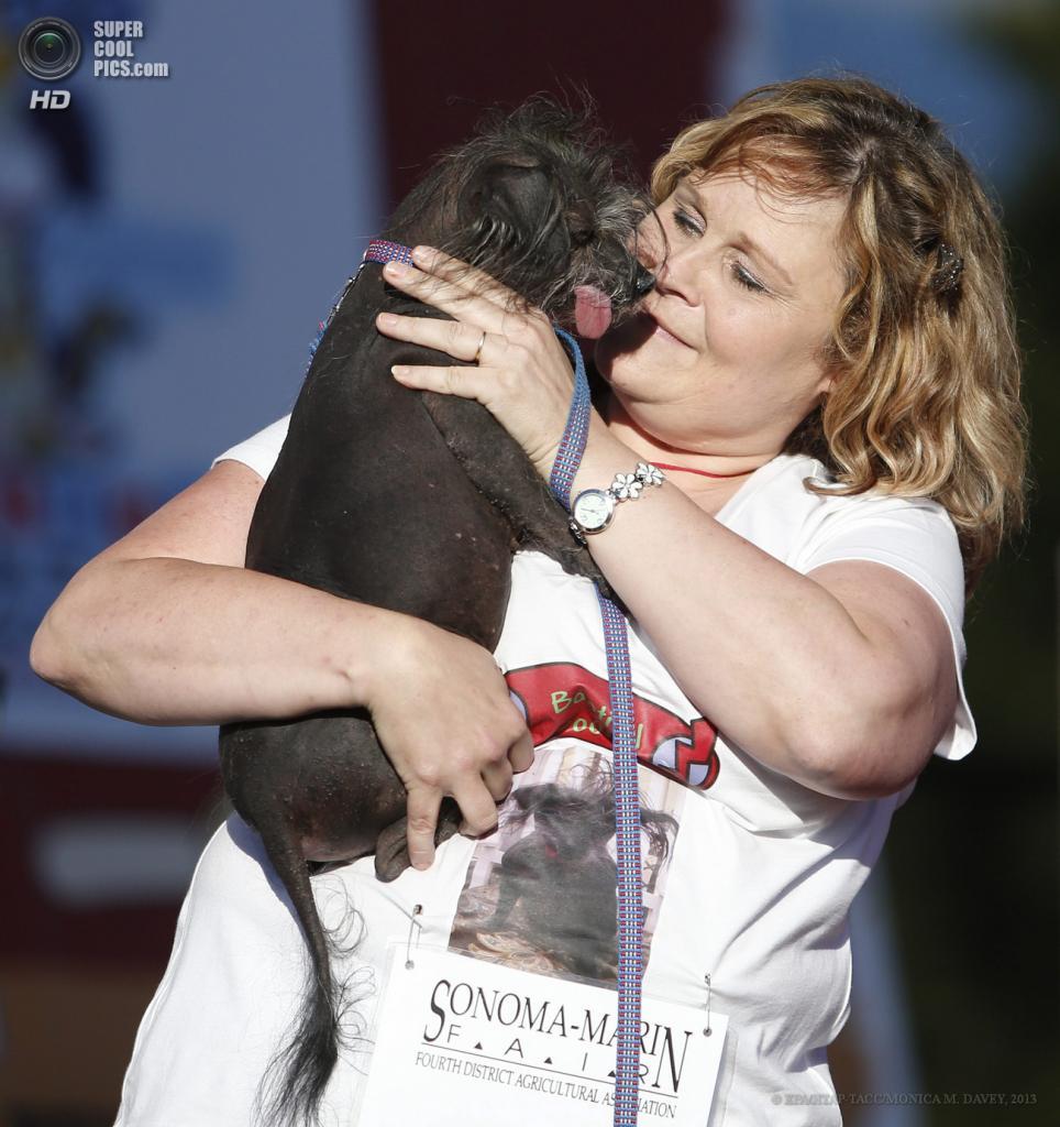 США. Петалума, Калифорния. 21 июня. Помесь китайской хохлатой собаки по кличке Була на юбилейном 25-м конкурсе уродливости World's Ugliest Dog Contest. (EPA/ИТАР-ТАСС/MONICA M. DAVEY)