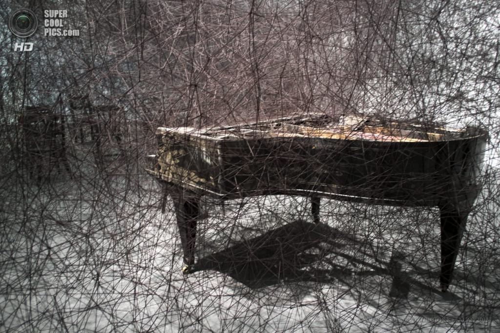 Швейцария. Базель. 10 июня. Инсталляция «In Silence» японской художницы Тихару Сиоты на выставке современного искусства Art Basel. (EPA/ИТАР-ТАСС/GEORGIOS KEFALAS)