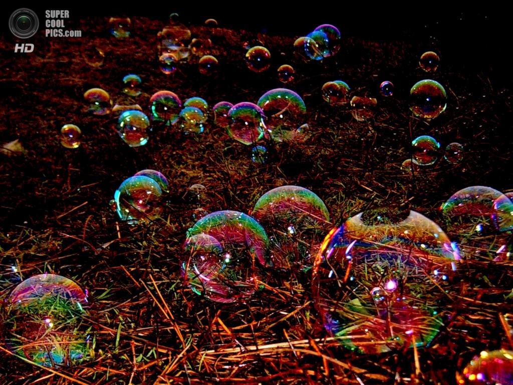 Мыльные пузыри. (Диана)