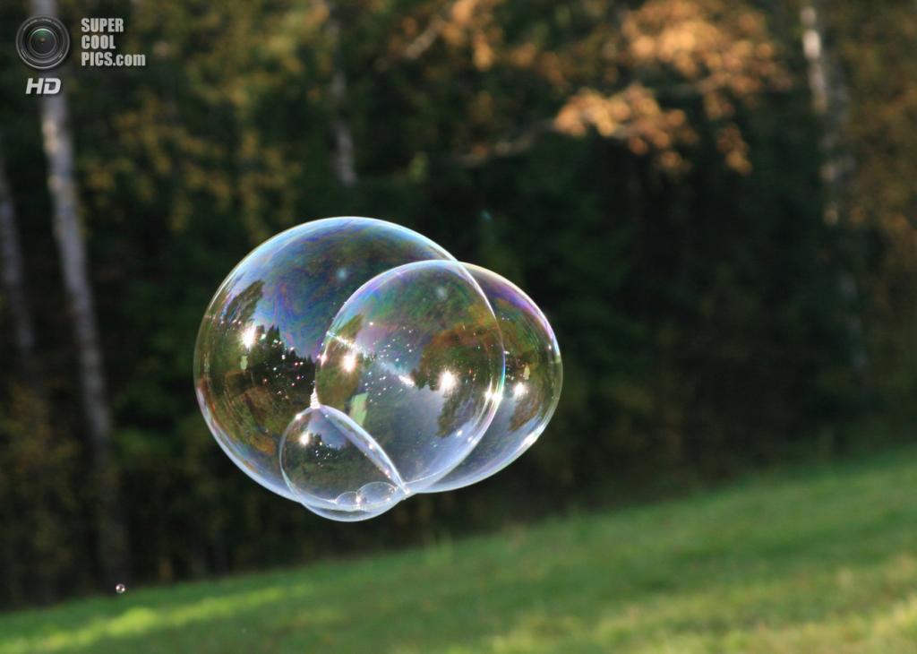 Мыльные пузыри. (yurkspb)