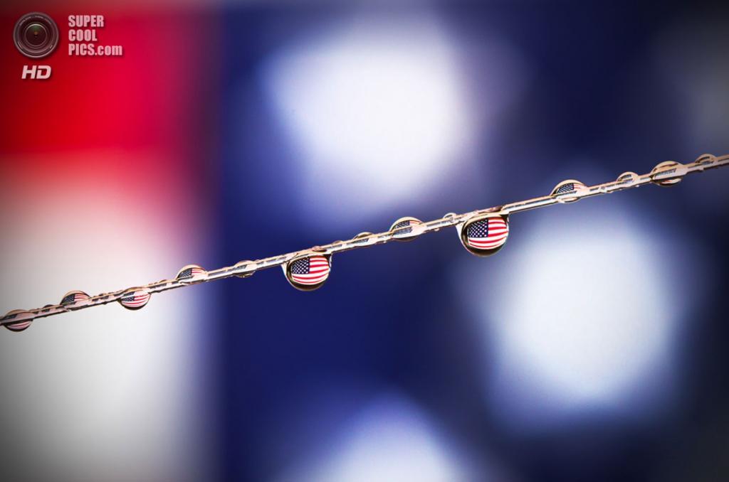 День независимости США. (Björn Burton)