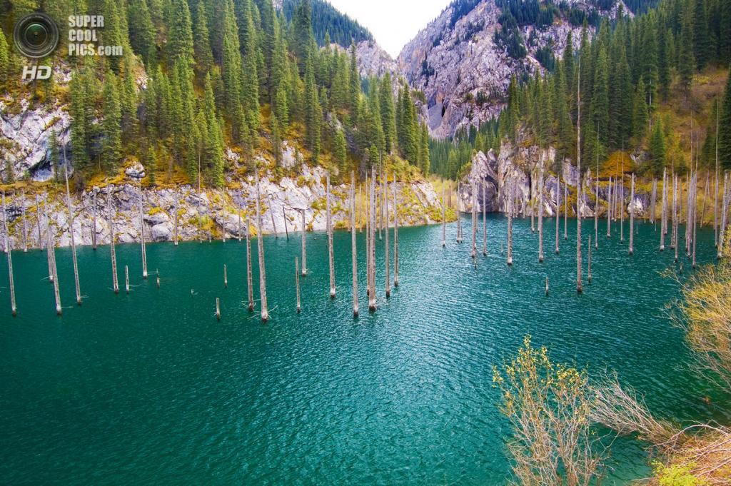 Казахстан. Ущелье Кунгей Алатау. Озеро Каинды. (Zhirayr Nersessian)