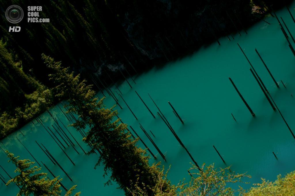 Казахстан. Ущелье Кунгей Алатау. Озеро Каинды. (nuggems)