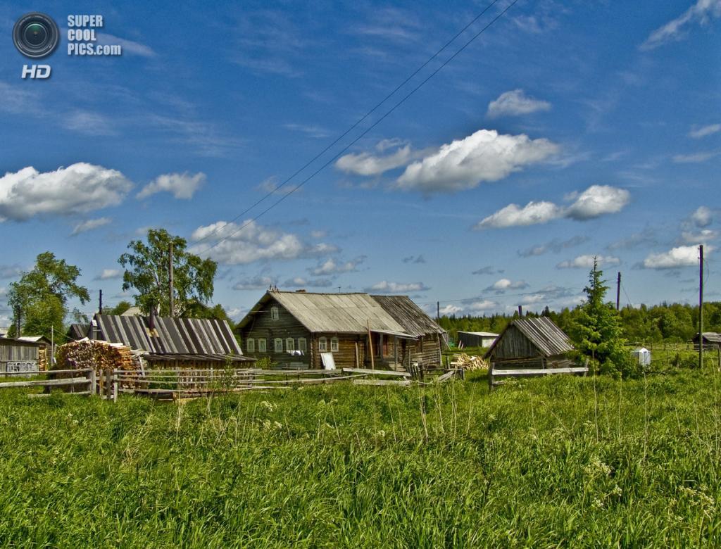 В деревне. (skorpions1967)