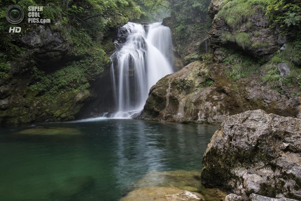 Словения. Триглавский национальный парк. (Nikolay Sapronov)