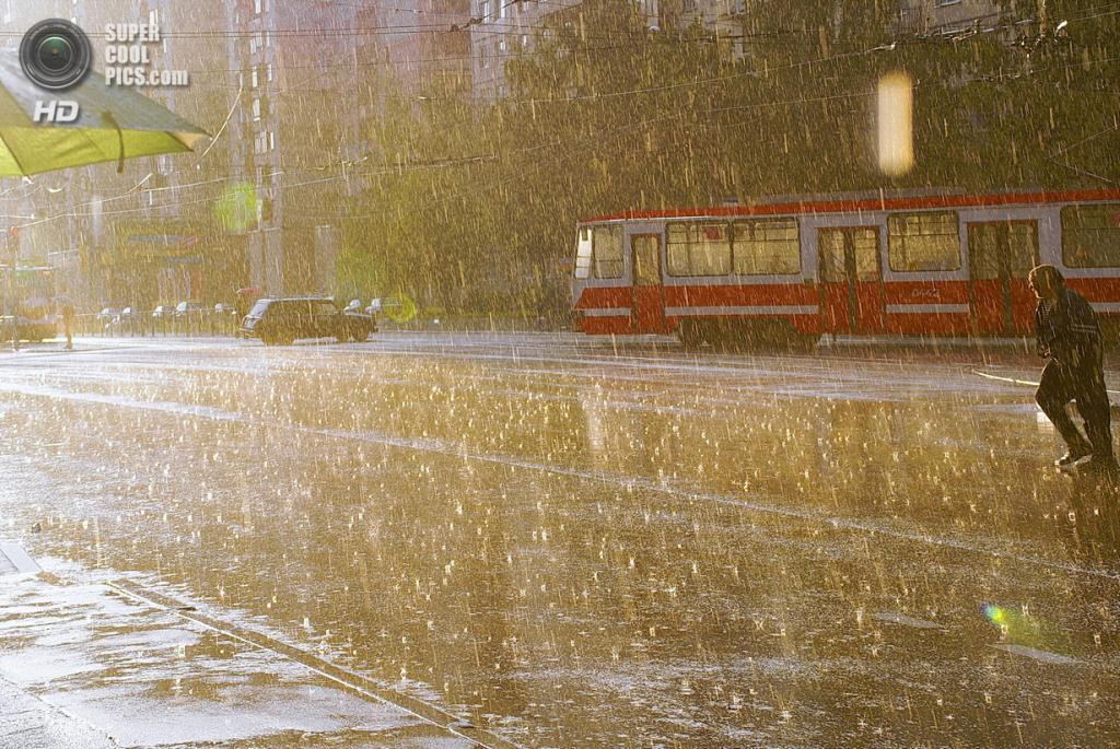 Под дождем. (xitriilisenok)