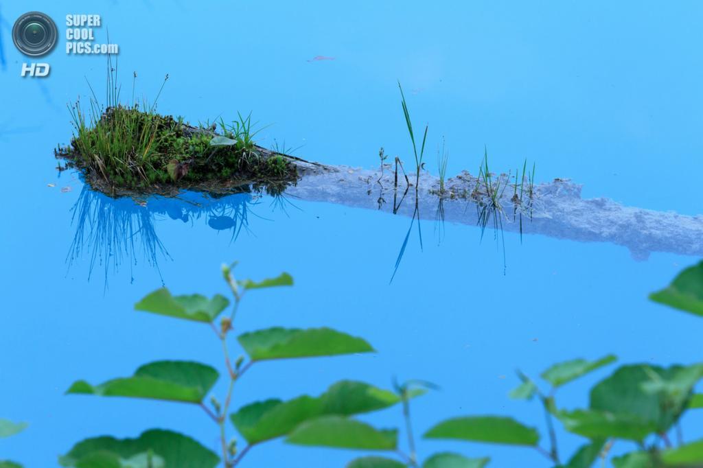 Япония. Хоккайдо. Голубой пруд. (Masayuki Miyamoto)