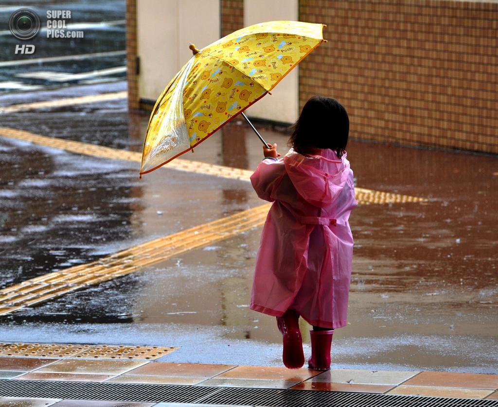 Под дождем. (наткор)
