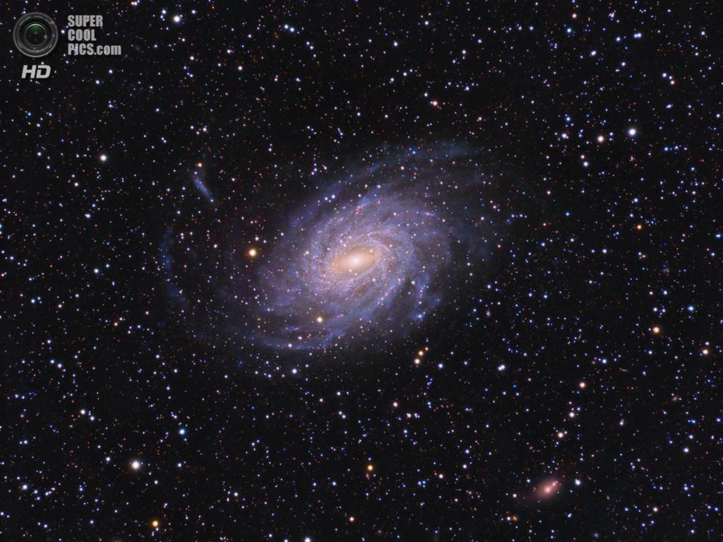 Галактика NGC 6744. (Marcus & Gail Davies)