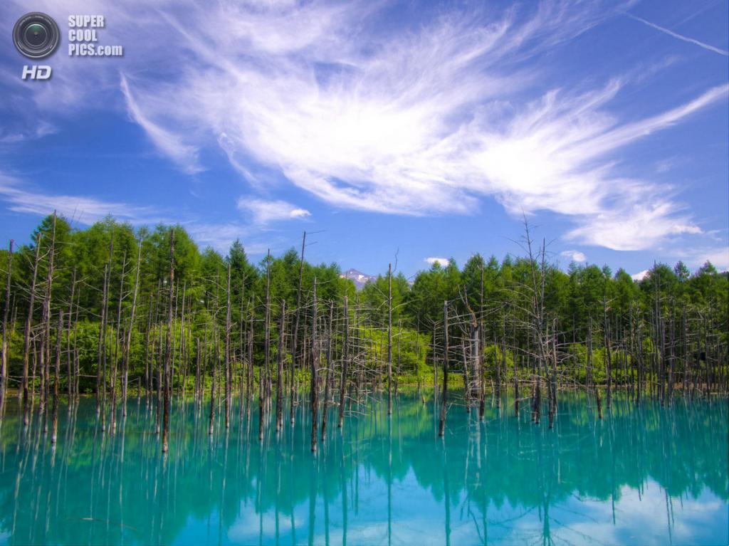 Япония. Хоккайдо. Голубой пруд. (Fritz Lekschas)