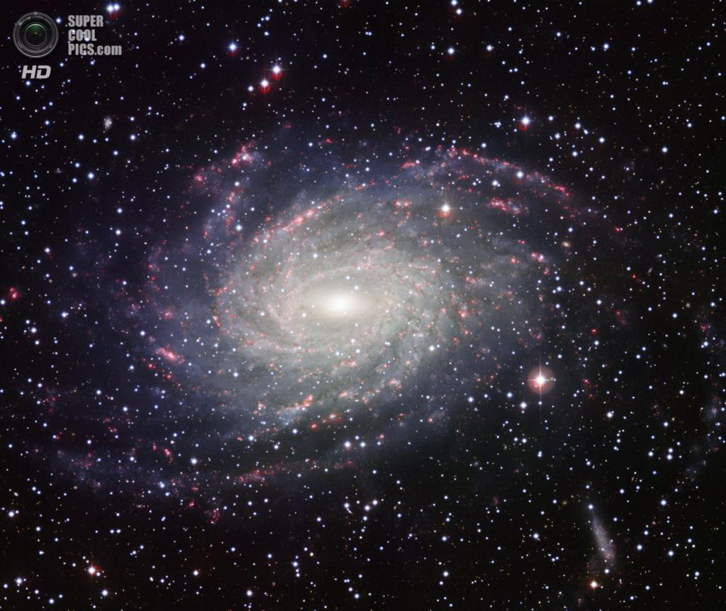 Галактика NGC 6744. (ESO)