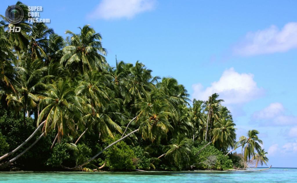 Мальдивы. (Easa Shamih)