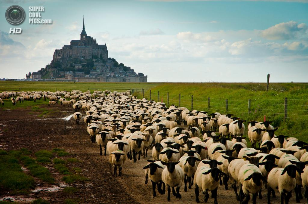 Франция. Манш, Нормандия. Остров-крепость Мон-Сен-Мишель. (Alberto L. Jordán)