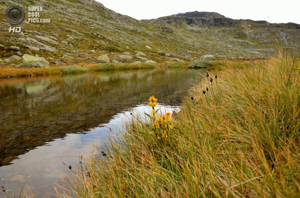 Норвегия. Озеро Рингедалсватн. (Grzegorz Morawski)