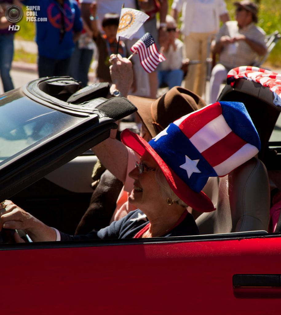 День независимости США. (alh1)