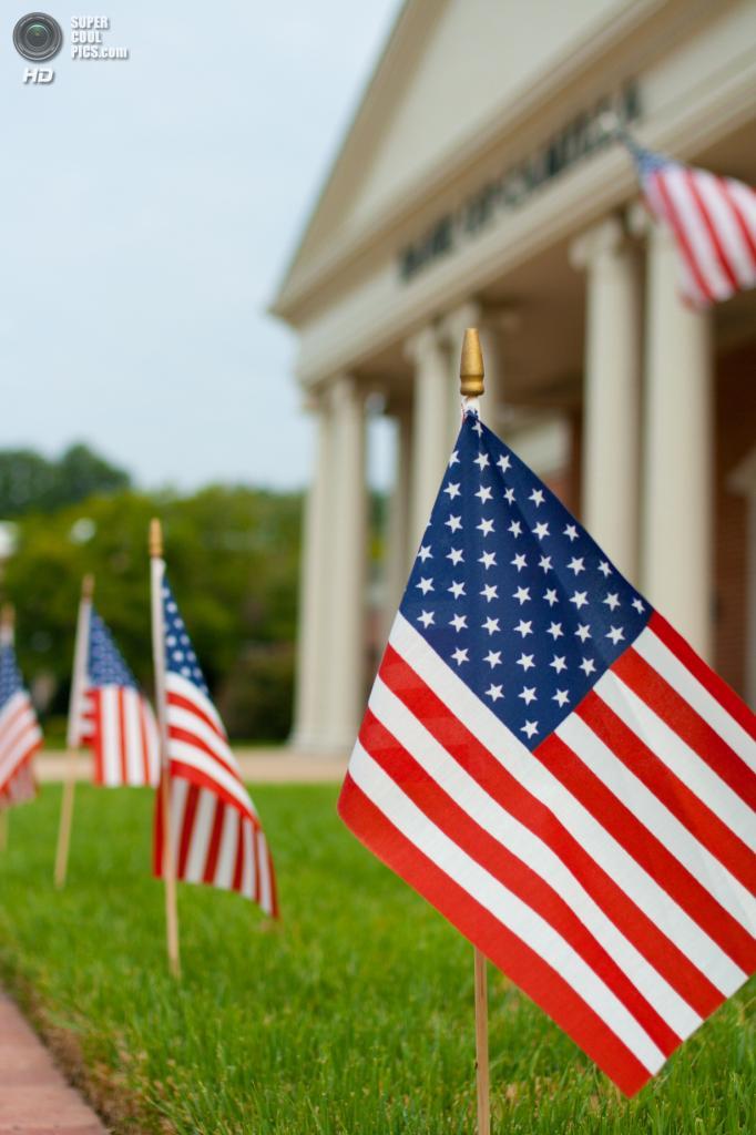 День независимости США. (Ben Sellars)