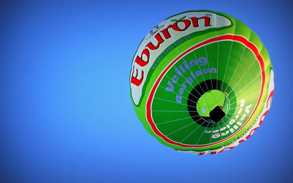 Европейский фестиваль воздушных шаров (8 фото)