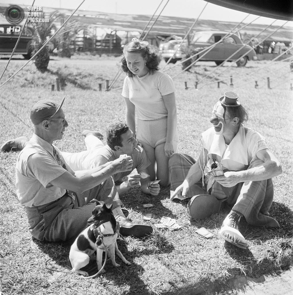 США. Нью-Йорк. 1948 год. Работники цирка играют в карты на поляне. (V&M/Look/Stanley Kubrick)