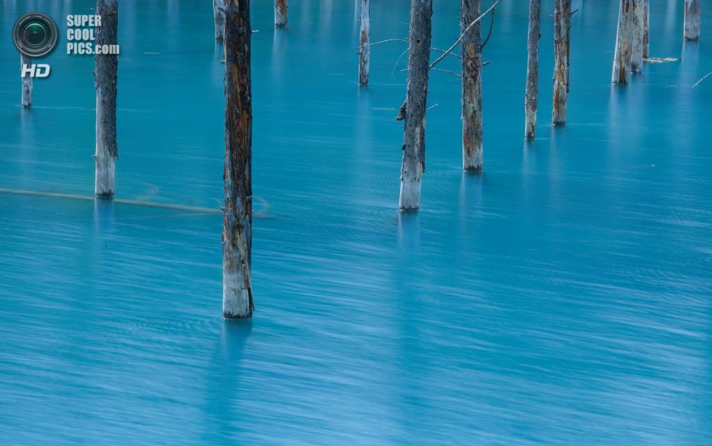 Япония. Хоккайдо. Голубой пруд. (Hiroshi Tanita.JP)
