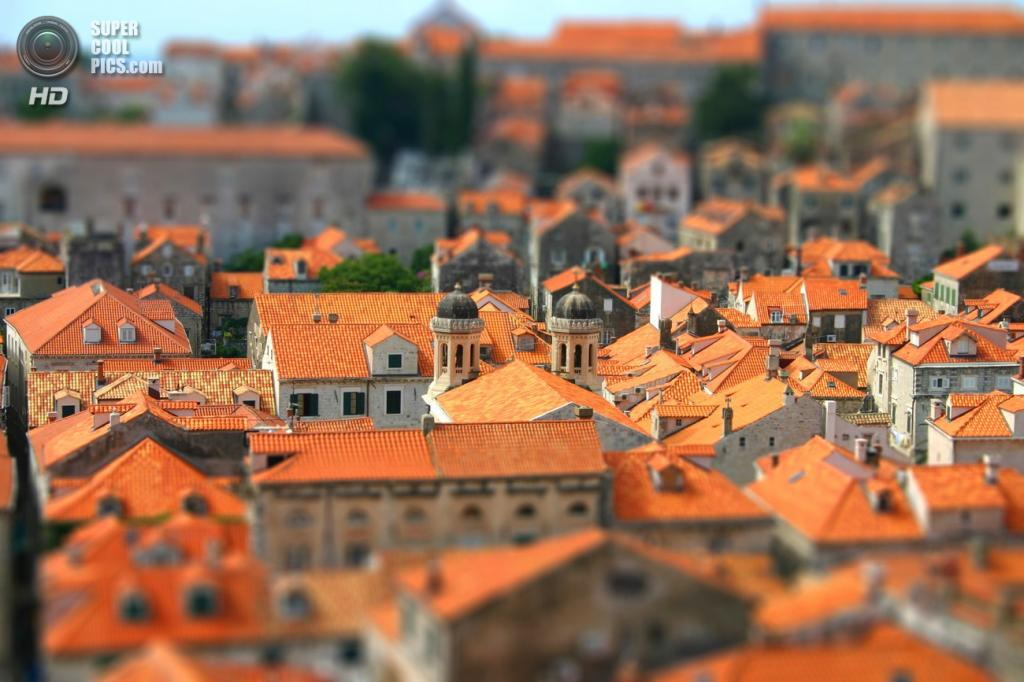 Вид сверху на крыши домов. (Craig Paterson)