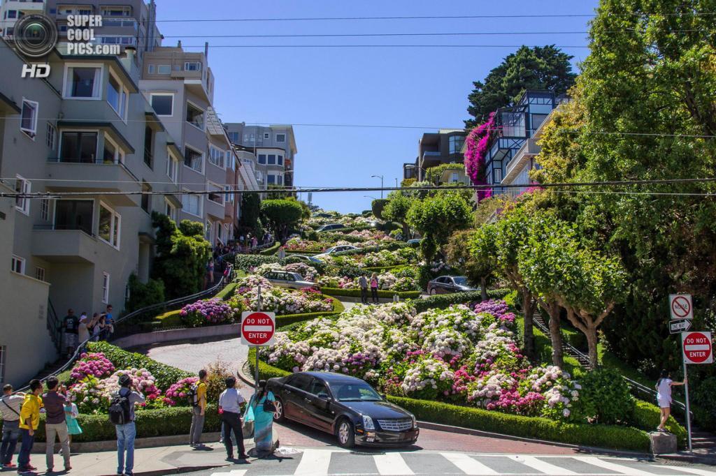 США. Сан-Франциско, Калифорния. Ломбард-стрит. (Andrew Holland)