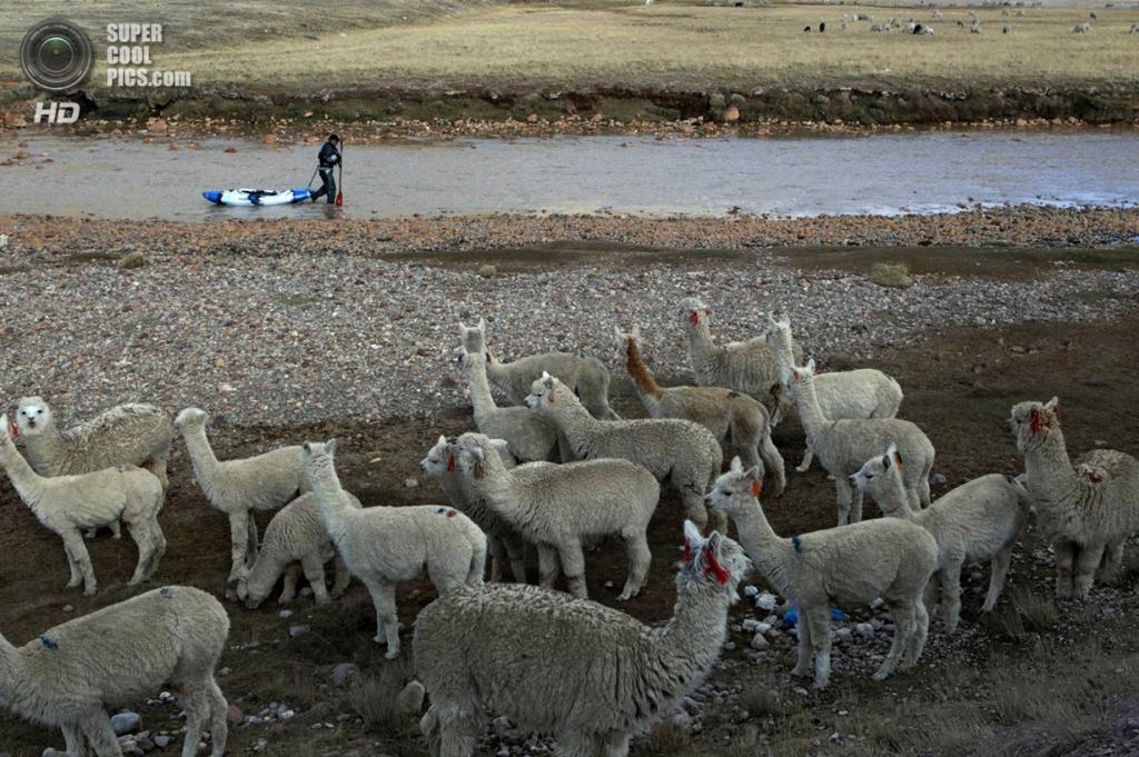 Перу. Паско. 5 сентября 2012 года. Во время экспедиции «Амазонский экспресс». (Erich Schlegel/ZUMA Press)