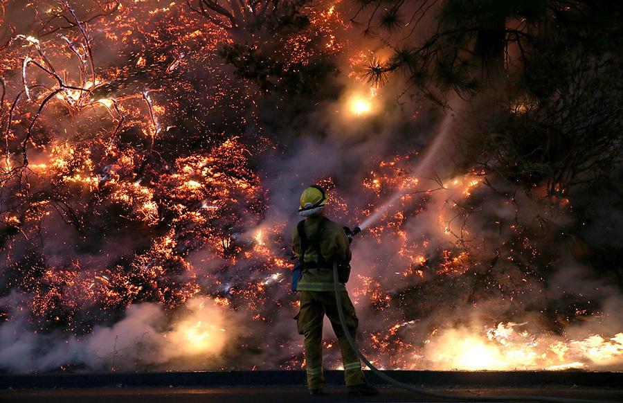 США. Гровленд, Калифорния. 24 августа. Тушение лесного пожара «Rim Fire», распространившегося на Йосемитский национальный парк. (Justin Sullivan/Getty Images)