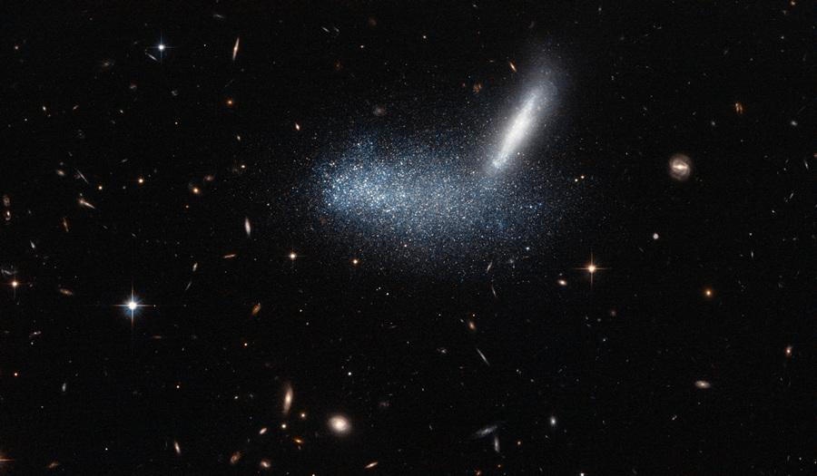 На переднем плане первого снимка находится неправильная карликовая галактика PGC 16389 — облако звёзд, охватывающее соседние галактики APMBGC +125-117+252, видимые с ребра. Также на этом снимке удалось запечатлеть множество ещё более далёких миров, в том числе очень заметную спиральную галактику справа. (NASA/ESA/Luca Limatola)