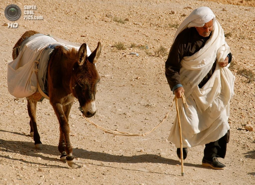 Тунис. Ксар-Улед-Солтане близ Татауина. (Mauro)