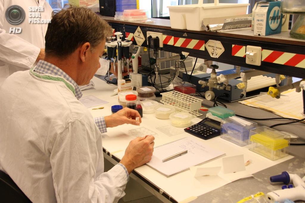 Работа в лаборатории. (culturedbeef.net)