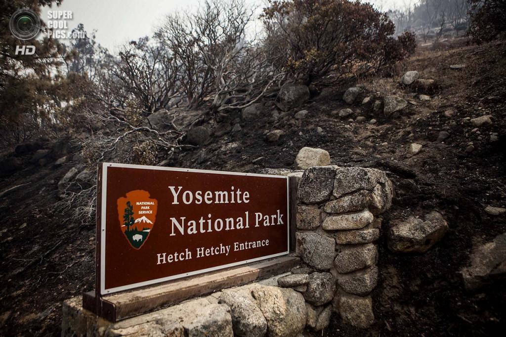 США. Бак-Медоус, Калифорния. 23 августа. Лесной пожар, угрожающий экосистеме Национального парка Йосемити. (REUTERS/Max Whittaker)