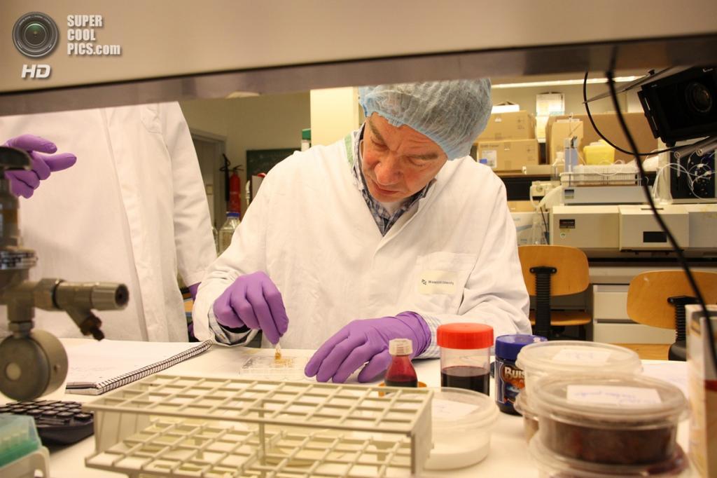 Профессор нидерландского университета Марк Пост в лаборатории. (culturedbeef.net)