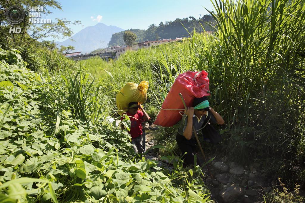 Мексика. Талисман, Чьяпас. 1 августа. Гватемальские нелегальные торговцы несут продукты на продажу. (John Moore/Getty Images)