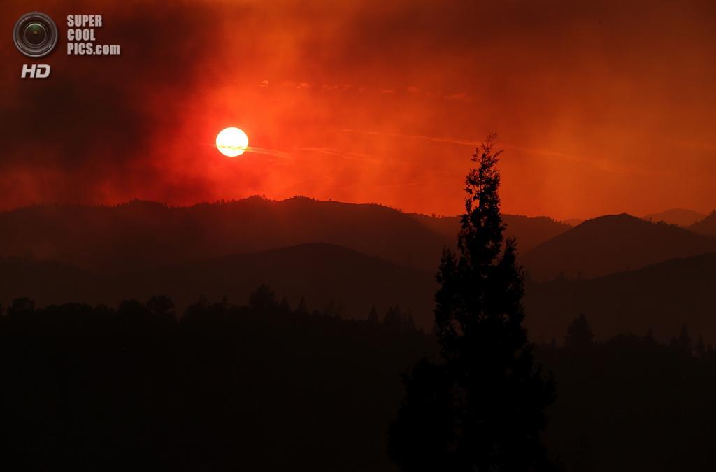 США. Гровленд, Калифорния. 21 августа. Лесной пожар, угрожающий экосистеме Национального парка Йосемити. (Justin Sullivan/Getty Images)