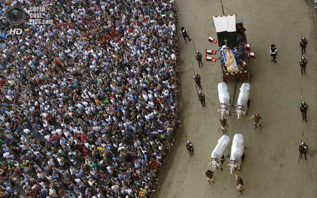 Италия. Сиена. 16 августа. Повозка с волами на историческом параде, предваряющем забег. (REUTERS/Stefano Rellandini)