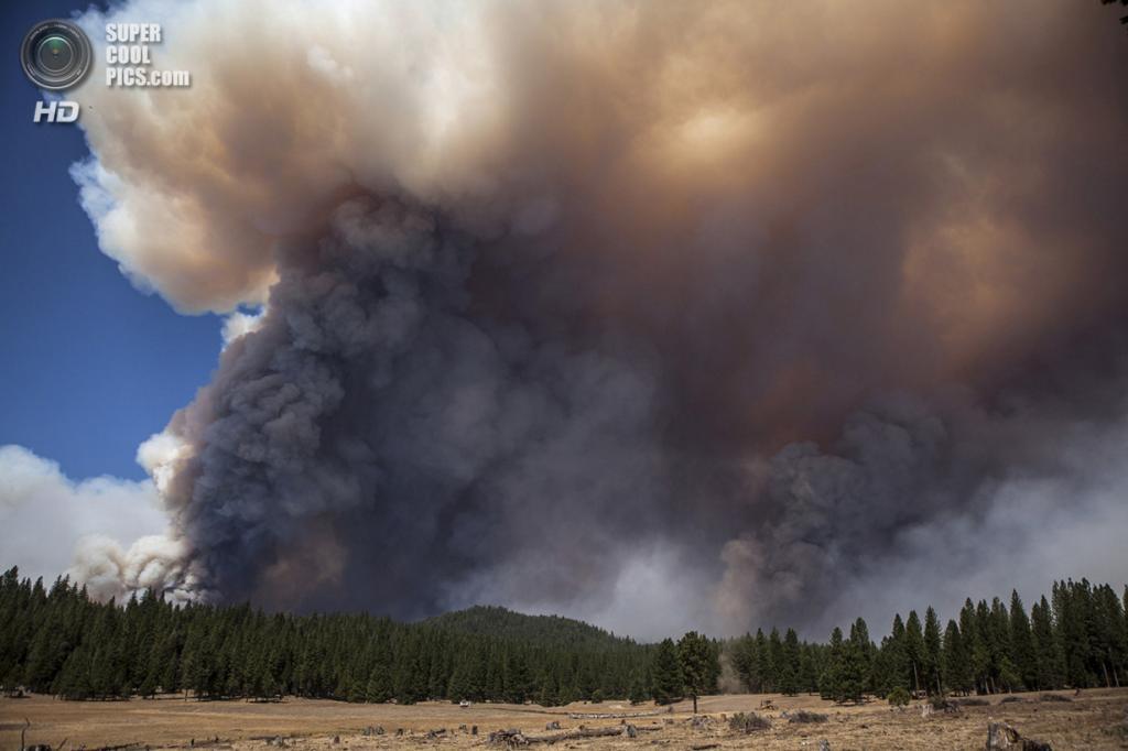 США. Гровленд, Калифорния. 23 августа. Дымовые тучи от лесного пожара «Rim Fire». (REUTERS/Max Whittaker)