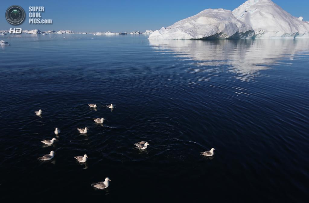 Пейзажи Гренландии. (Joe Raedle/Getty Images)