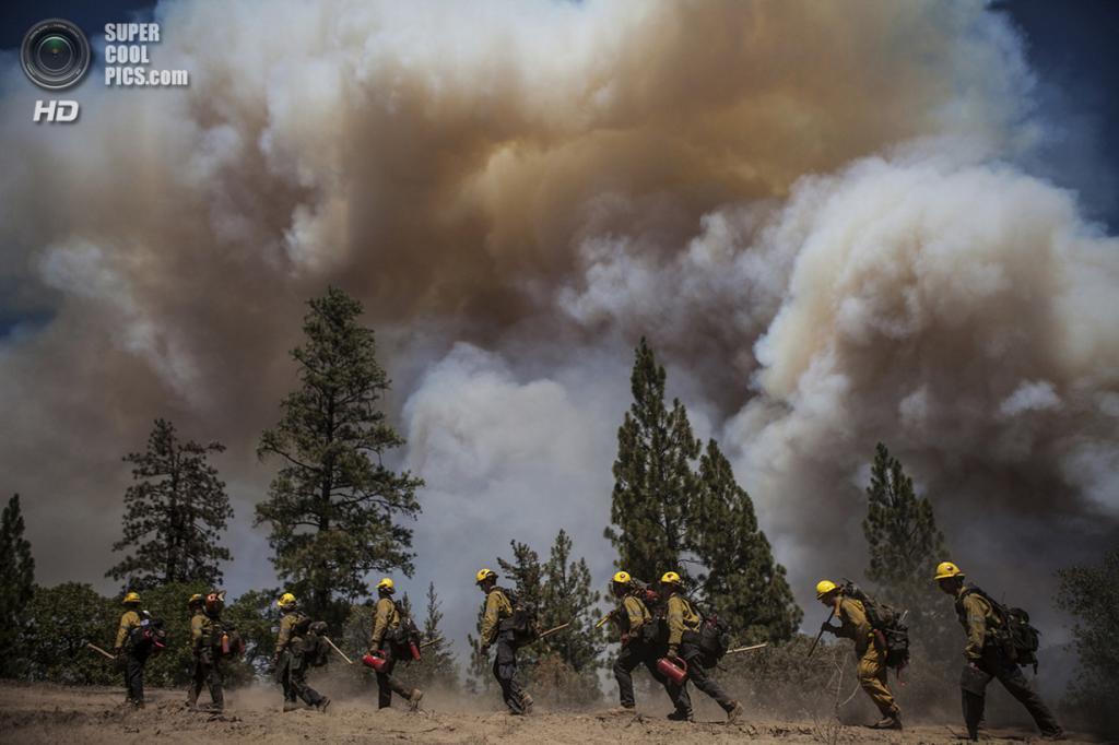 США. Гровленд, Калифорния. 22 августа. Пожарные из Лос-Анджелеса идут «на передовую». (REUTERS/Max Whittaker)